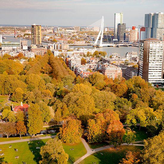 Park Rotterdam